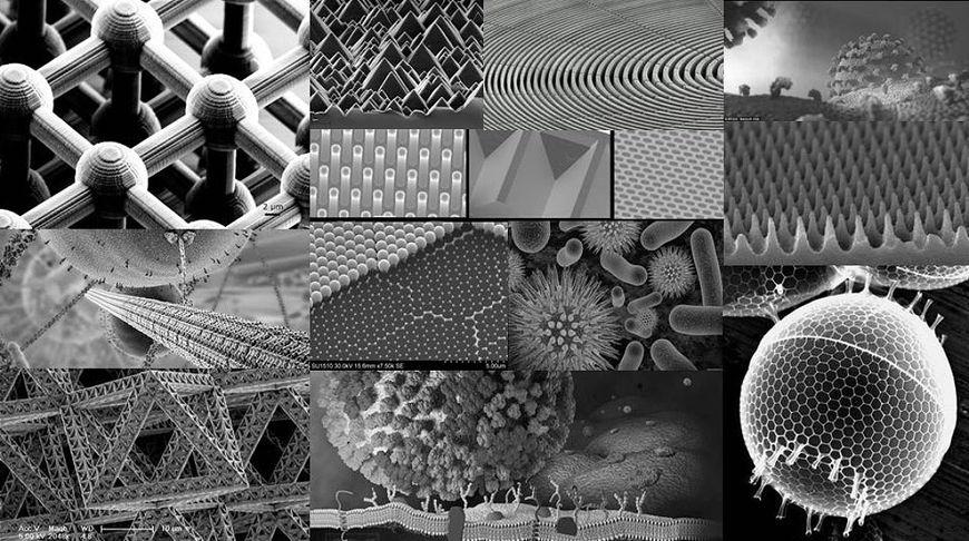 "IMAGE: Pause 2017 ""Nano World"" Reference 01"